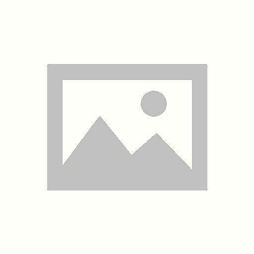 [USED] Nikon DG-2 Eyepiece (2x) Magnifier